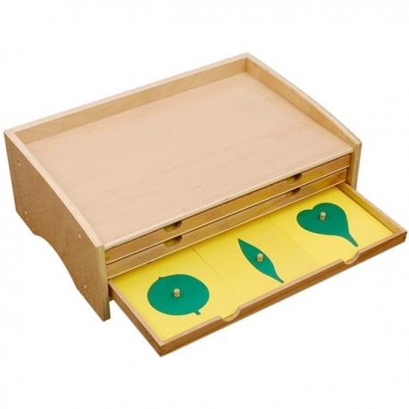 Cabinet de botanique feuilles complet
