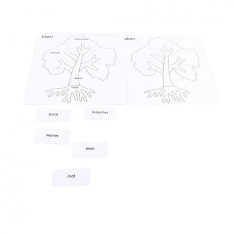 Cartes de contrôle arbre en français