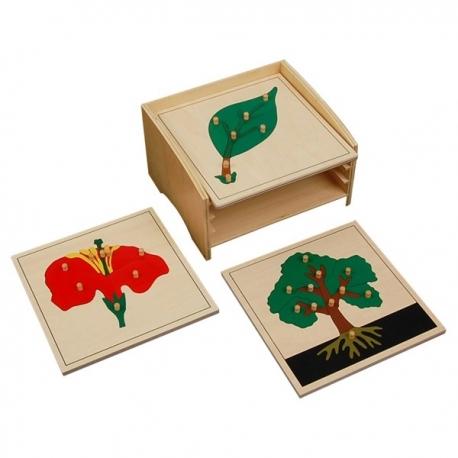 Cabinet complet de 4 puzzles botanique haut de gamme