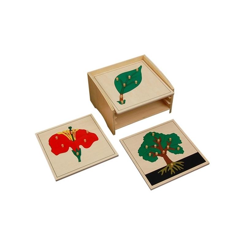 cabinet de 3 puzzle botanique complet