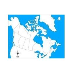 carte d'autocorrection canada non renseignée