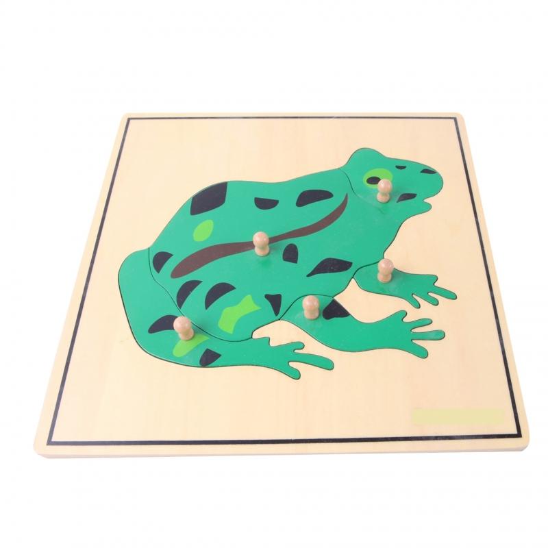 puzzle grenouille