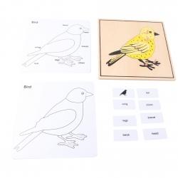 puzzle oiseau